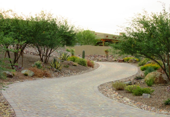 Diy xeriscape landscape design arizona desert xeriscape for Garden landscaping ideas for large gardens